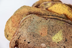 Slices of old moldy rye bread on white background Royalty Free Stock Images