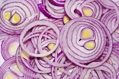Slices of onion Royalty Free Stock Image