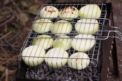 Slices of onions on barbecue grill Stock Image