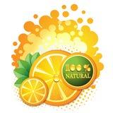 Slices orange Stock Image