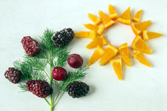Slices of orange as a symbol of the sun on a white background. D. Ill with frozen berries. Concept - Healthy food. Summer royalty free stock image