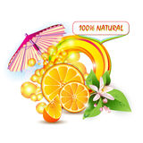 Slices orange with flowers vector illustration