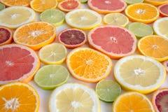 Slices of orange, grapefruit, blood orange lemon, lime arranged as a background Royalty Free Stock Photography