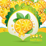 Slices orange with leaf Royalty Free Stock Photography