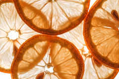 Slices of orange Stock Images