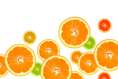 Slices of Oranges Royalty Free Stock Photography
