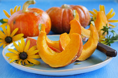 Slices of pumpkin Stock Images