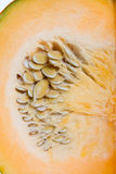 Slices of pumpkin and sunflower seeds. Stock Photography