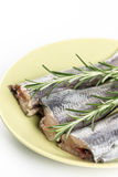 Slices of raw hake fish with rosemary branches on the plate.  Royalty Free Stock Photos