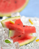 Slices of red watermelon and ice cubes Stock Image