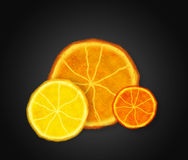 Slices of ripe orange Stock Photos