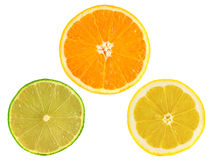 Slices of ripe orange, lemon, lime on white Stock Photo