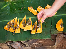 Slices of ripe papaya lie on the leaves of palm trees Stock Photography