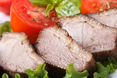 Slices of roasted duck meat fillet with vegetables macro Stock Photo