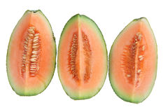 Slices of Rock Melon royalty free stock image