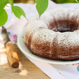 Slices of Rustic Style Bundt Cake Sprinkled with Icing Sugar Royalty Free Stock Photos
