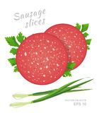 Slices of salami sausage with fresh parsley and green onion isolated. On white background. Meat delicatessen product. Vector gastronomic illustration in cartoon vector illustration