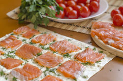 Slices of salmon with cutted dill on a piece of pita. Cooking Royalty Free Stock Photos