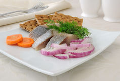 Slices of salted herring with onions Royalty Free Stock Photo
