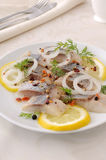 Slices of salted herring with onion, lemon and spices Royalty Free Stock Photography