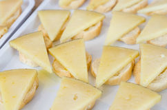 Slices of sheep cheeses Stock Images