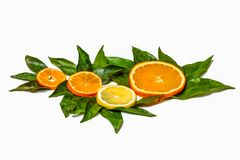 Slices of tangerine, orange and lemon on green lea Royalty Free Stock Photography