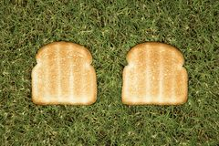 Slices of toast on grass. Royalty Free Stock Photo