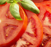 Slices of tomato Royalty Free Stock Images