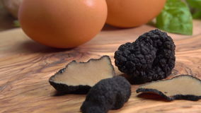Slices and tubers of black truffle lying on background of eggs. Close-up of slices and tubers of black truffle lying on background of eggs stock video footage