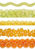 Slices of various citruses Royalty Free Stock Photo