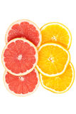 Slices of various citruses on white Royalty Free Stock Images