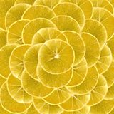 Slices of vibrant lemon for backgrounds Stock Images