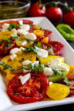 Slices of vine ripe tomato varieties Royalty Free Stock Images
