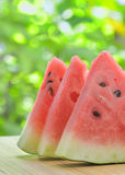 Slices of watermelon Stock Images