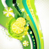 Slices yellow lemon Stock Image