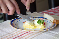 Slicing boiled egg with mayonnaise Royalty Free Stock Images