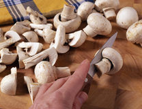 Slicing the button mushrooms Stock Image