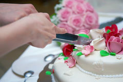 Slicing the cake Royalty Free Stock Photography