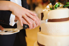 Slicing the cake Royalty Free Stock Image