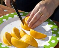 Slicing Citrus Royalty Free Stock Photo