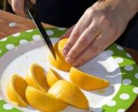 Slicing Citrus Royalty Free Stock Photo
