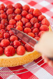 Slicing a fruit cake with strawberries and red currants Stock Photography