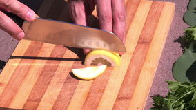 Slicing a lemon Royalty Free Stock Image