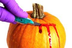 Slicing a Pumpkin Stock Images