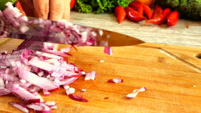 Slicing Red Onion In Slow Motion stock footage