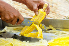 Slicing steamed corn Stock Image