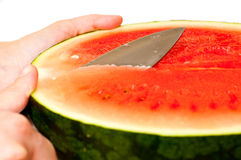 Slicing a watermelon Stock Image