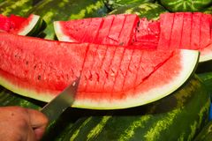 Slicing a watermelon on an open air market stand Royalty Free Stock Image