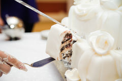 Slicing the wedding cake Stock Image