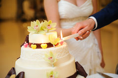 Slicing the wedding cake Royalty Free Stock Photo